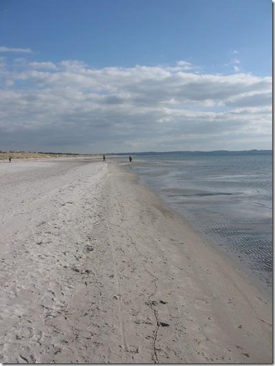 stranden ved Tengslemark Lyng