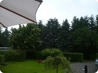 En regnfuld have